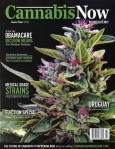 CANNABIS NOW MAGAZINE